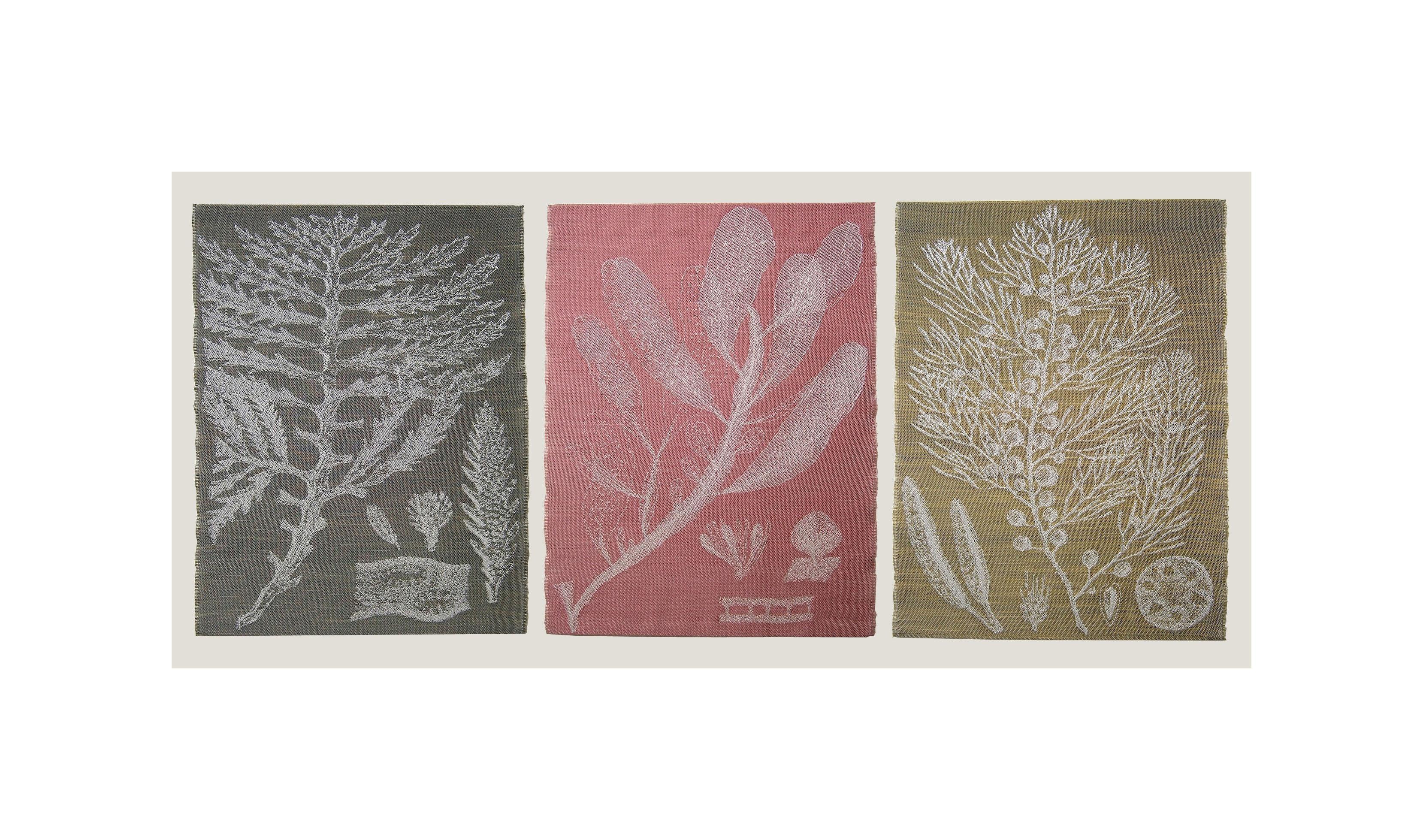 Flora Folio design on Fbaric